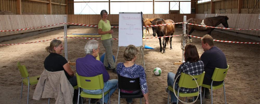 Pferdecoaching Führungskräfte